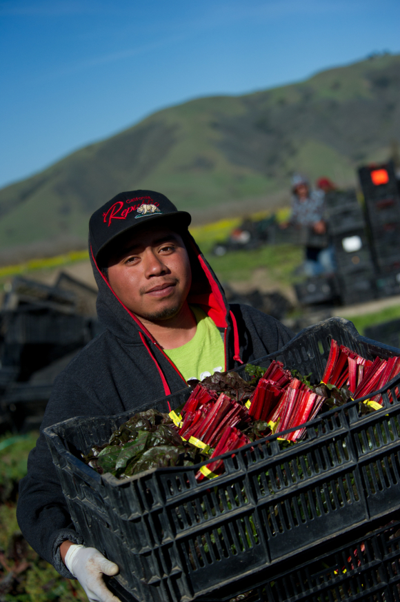 California goes to more than export crops photo by John Chacon, DWR