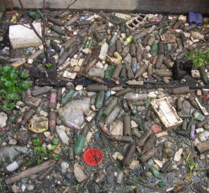 shoreline plastic and garbage
